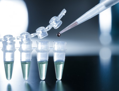Injecting stem cells won't cure blindness, yet